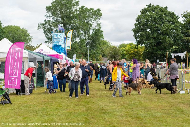 Fordingbridge Festival 2019 009